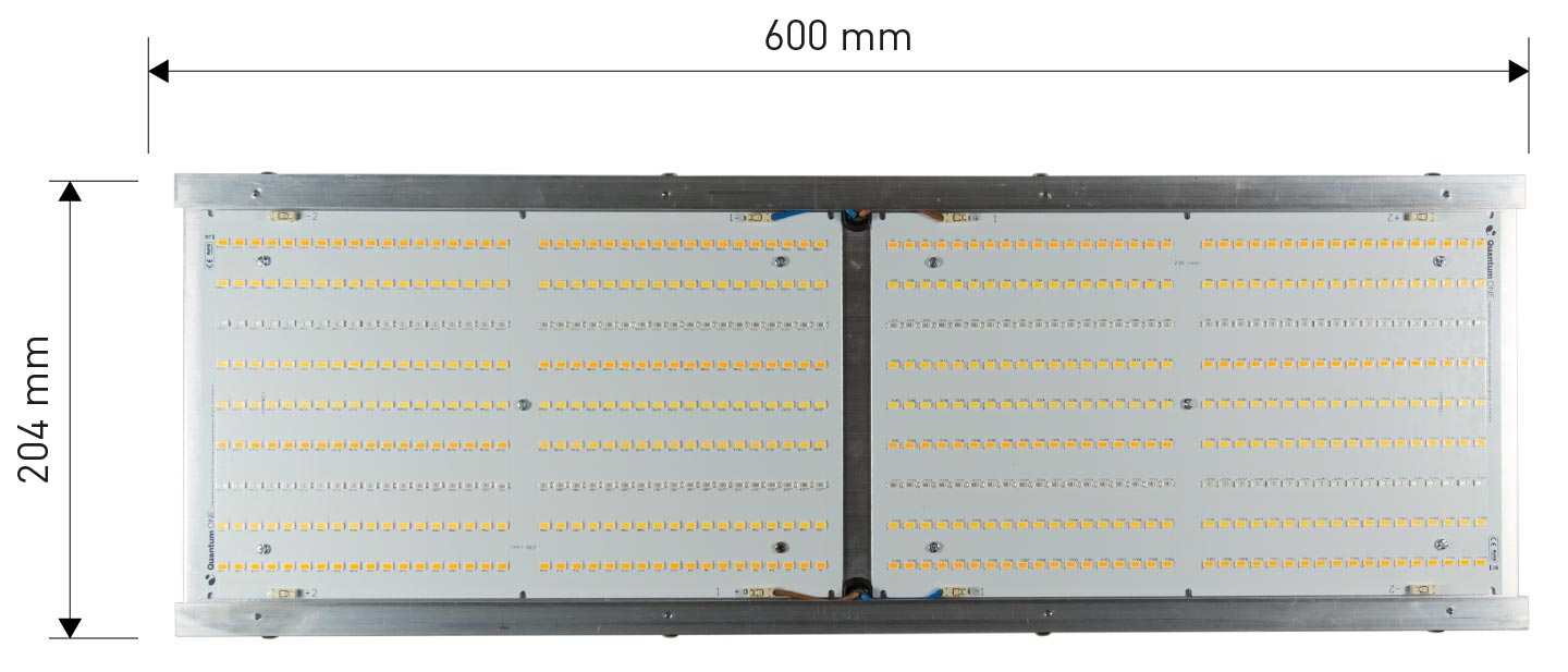 Quantum One - Ortho LED Quantum Board - Bottom View